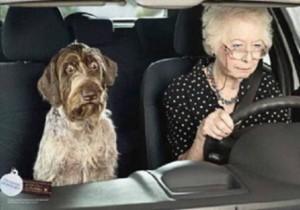 Personnes âgées au volant - la bonne conduite