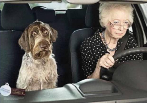 Personnes âgées au volant : la bonne conduite